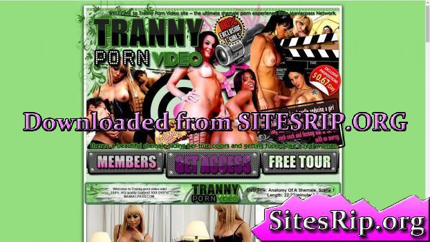 TrannyPornVideo – SITERIP