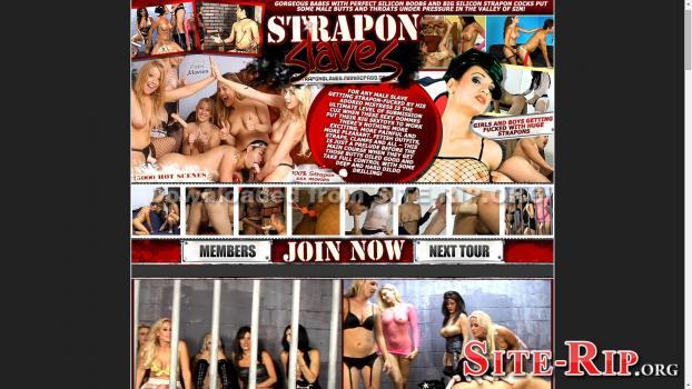 27665351_straponslaves