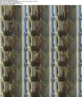 28810161_tbp-ll-150726-qsshowesex_s.jpg