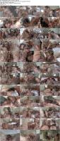 29348336_asiancandypop_mint_and_nan_720p_s.jpg