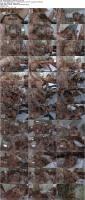 29348351_asiancandypop_nit-pook-_720p_s.jpg