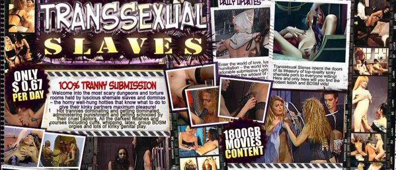 TranssexualSlaves – SiteRip