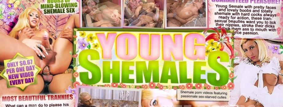25893098_youngshemales.jpg